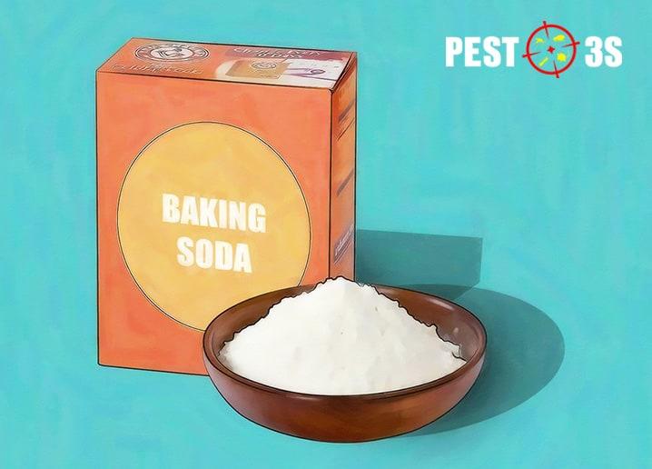 Baking-soda-diet-bo-chet