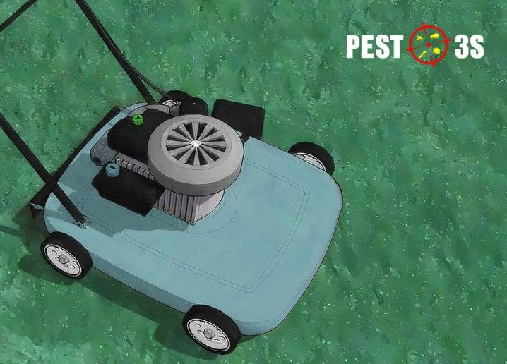 Máy cắt cỏ diệt bọ chét
