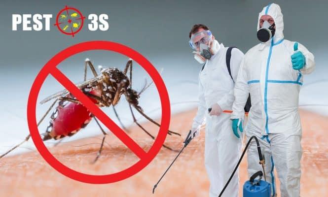 Phun thuốc diệt muỗi tại nhà an toàn và hiệu quả