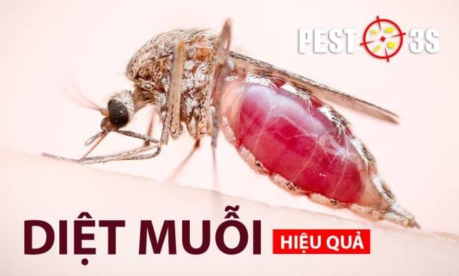 Diệt muỗi hiệu quả nhất